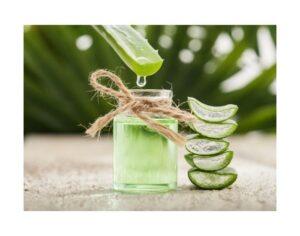Immagine di aloe vera contenuta nel detergente lenitivo Herbalife